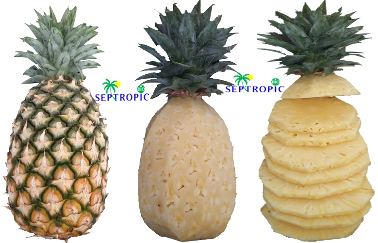ananas séché bio, mangue séchée bio, banane séchée bio, ananas frais bio, mangue fraiche bio, banane fraiche bio